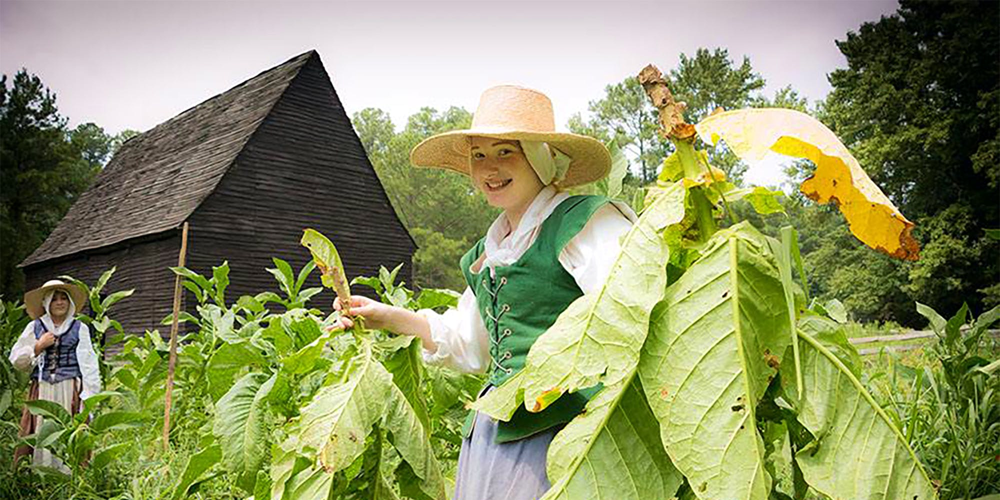 Visit the Godiah Spray Tobacco Plantation, representing a small farm in 1667.