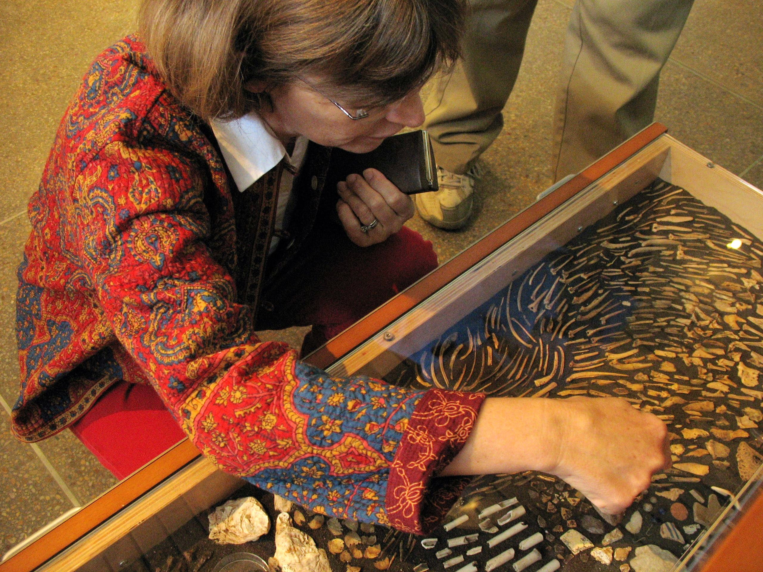 Visitor looking at drawer full of artifacts