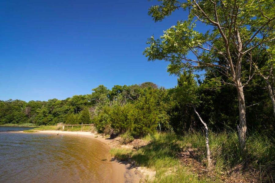 A small beach area - Chancellor's Point