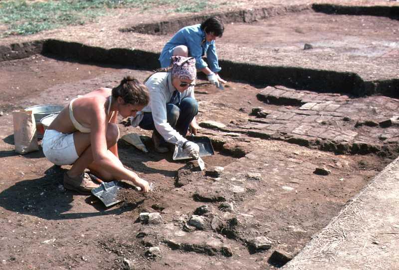 Excavations at the Van Sweringen site